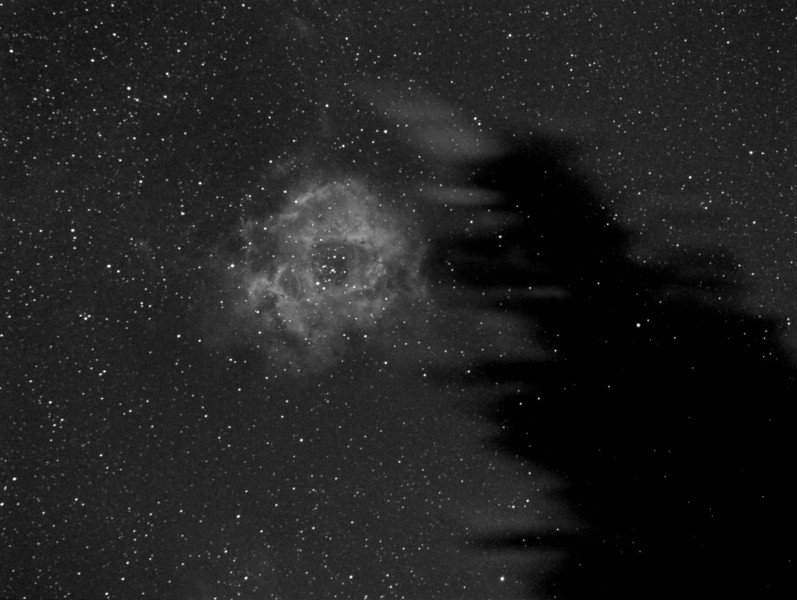 T'was a windy night under the pines... 120 seconds Ha filter, the Rosette Nebula.<br /> Canon 200mm @f2.8 and ML8300 camera with Baader Ha filter. Taken by Lynn Hilborn,WhistleStop Obs,Grafton,Ontario.