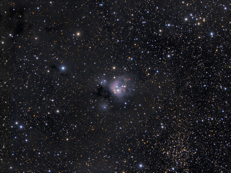 NGC 7129 (full frame- note open cluster NGC 7142 and some galaxies to lower right)....TEC140 @f7 and FLI ML8300 camera on Tak NJP mount. Lum 1x1 21x10m RGB 2x2 each 21x5m.<br /> 9 hours of exposure. Taken by Lynn Hilborn, WhistleStop Obs, Grafton, Ontario on July 1,3,5,2011.. Editor's Choice,  Photo Gallery , Sky and Telescope magazine.<br /> NGC 7129 (NGC 7133) text with permission of Robert Gendler<br /> Distance 3300 light years<br /> Right Ascension: 21 : 41.3 (hours : minutes)<br /> Declination: +66 : 06 (degrees : minutes)<br /> NGC 7129 is a young compact star forming region which displays an unusual patchwork of colorful nebulosity and bright stars contrasted against the dust clouds of the Milky Way. The astronomical correlate of those colors and textures is the rich interplay that occurs between young stars and the surrounding interstellar medium. NGC 7129 contains several bright reflection nebulae including the large blue reflection cloud NGC 7133 and the unusual small yellow reflection cloud LBN497. Also conspicuous in the field are several bright Herbig-Haro objects, the signatures of young stellar objects soon to emerge in the main sequence. The dominant blue reflection nebula, NGC 7133 is illuminated by two young B-type stars BD +65°1637 and BD +65°1638. Both stars are less than one million years old and represent the core of NGC 7129, a small cluster of low mass stars which populate the 36 light year wide cavity. BD +65°1638 is the older of the two illuminating stars and has played a critical role in the formation of NGC 7129. Around 100,000 years ago the ultraviolet radiation field from the young star began to burrow a cavity into the surface of a nearby molecular cloud. As the cavity expanded, a ridge like interface formed where the expanding cavity contacted the molecular cloud, triggering an intense period of contained star formation. The bright stars went on to illuminate the ambient dust surrounding the cluster, forming the brilliant reflection 