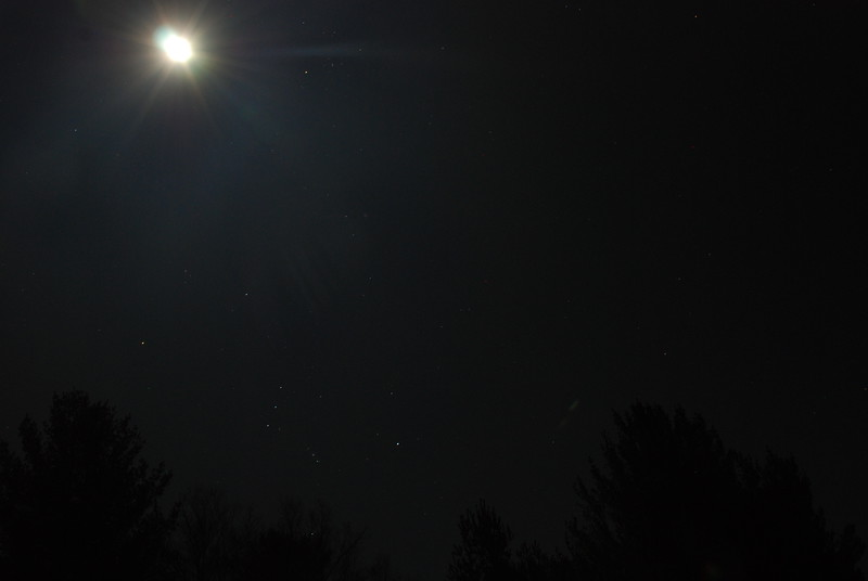 Upper Saranac Lake North Launch - 11/11/11<br /> Moon and Orion over trees, eastern sky