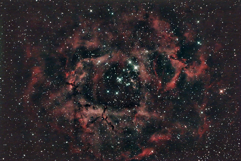 Caldwell C49 & C50 - NGC2237-9,NGC2244, 2246 - Rosette Nebula and Open Cluster in Monoceros - 19/12/2020 (Processed stack)