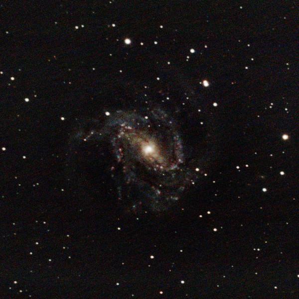 M83 - NGC5236 - Southern Pinwheel Galaxy - 29/1/2021 (Processed cropped stack)