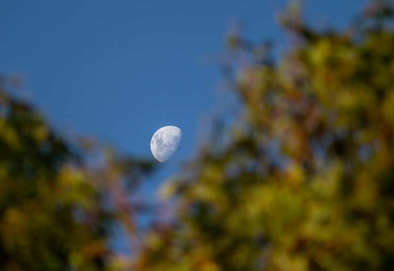 Moon near Clontarf Foreshore