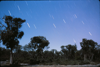 Scorpio Rising in the East with 8 Day moonlit foreground - 12/4/1981