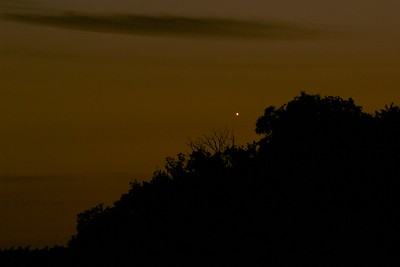 Venus in the horizon