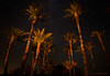 Second night out there was someone light painting almost every statue so we decided to work with the date palms.
