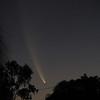 Comet McNaught 19th January 2007