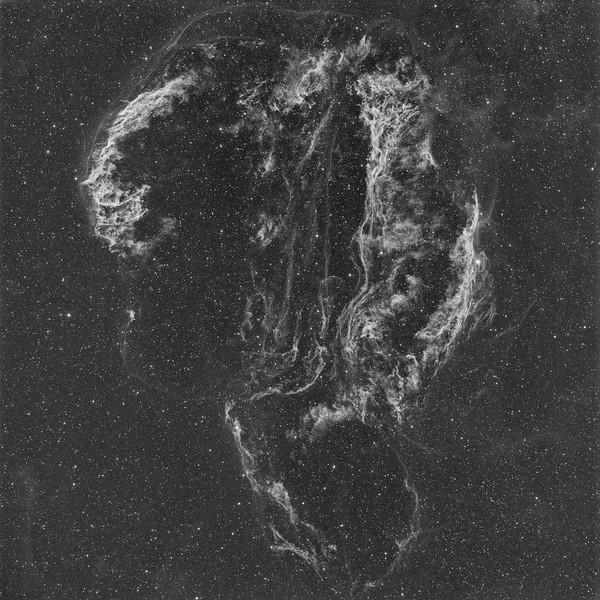 Cygnus Loop aka Veil Nebula Complex  - Ha 5nm