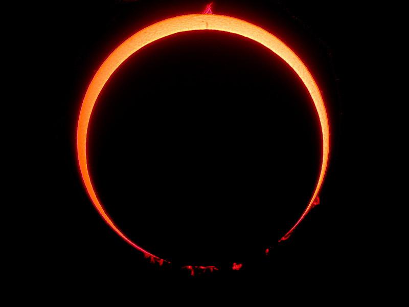 Anular Solar Eclipse<br /> <br /> Location: Spain, 2005-10-03<br /> <br /> Instrument: Borg 76ED f6.6 + filter Coronado SM60 + Nikon 995 in afocal method with Plossl 25 mm