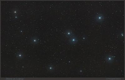 Stars in Lupus