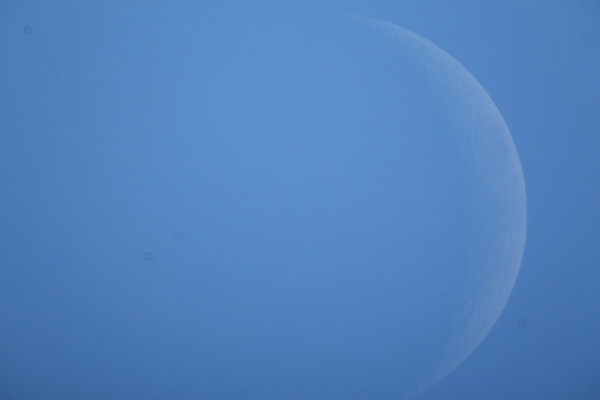 Photo of the Waxing crescent Moon during the early afternoon of Jan. 31, 2017.