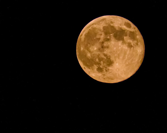 Super Moon - August 10, 2014
