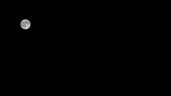 M5D40401-2