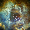 Another version of Rosette Nebula in Hubble palette<br /> Date: Over 3 nights 10-12th November 2009