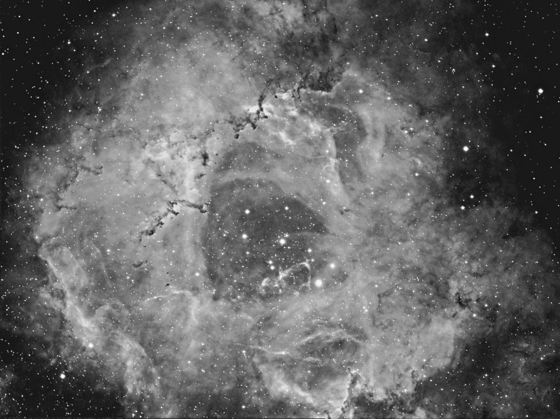NGC 2237 - Rosette Nebula<br /> **********************************************************************************************<br /> Processed.<br /> **************************************************************************<br /> Captured using:<br /> Site: My Backyard - Toongabbie NSW (suburb of Sydney Australia|<br /> Camera: QHY9 CCD (mono KAF 8300 chip) as main and QHY5 as guide|<br /> Filters: Ha 7nm (10x20min)|<br /> MPCC Field Flattener<br /> Captured using Nebulosity 2 and PHD for guiding|<br /> Scope: WO FLT110  f/7 TMB|<br /> Mount: HEQ5 Pro|<br /> QHY Filter Wheel 2"