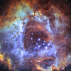 NGC 2237 - Rosette Nebula|<br /> The Rosette Nebula is a large, circular H II region located near one end of a giant molecular cloud in the Monoceros region of the Milky Way Galaxy. The open cluster NGC 2244 is closely associated with the nebulosity, the stars of the cluster having been formed from the nebula's matter.The cluster and nebula lie at a distance of some 5,200 light years from Earth (although estimates of the distance vary considerably) and measure roughly 130 light years in diameter. The radiation from the young stars excite the atoms in the nebula, causing them to emit radiation themselves producing the emission nebula we see.<br /> **********************************************************************************************<br /> Processed using Hubble Palette Sii=red Ha=Green Oiii=Blue|<br /> This is work in progress, need to capature more data and this image had to be cropped due to miss framing during capture.<br /> ************************************************************************************************<br /> Captured using:<br /> Date: Over 3 nights 10-12th November 2009<br /> Site: My Backyard - Toongabbie NSW (suburb of Sydney Australia|<br /> Camera: QHY9 CCD (mono KAF 8300 chip) as main and QHY5 as guide|<br /> Filters: Sii 8nm (11x20min Bin2), Ha 7nm (7x20min)|, Oiii 8.5nm (11x20min Bin2)|<br /> MPCC Field Flattener<br /> Captured using Nebulosity 2 and PHD for guiding|<br /> Scope: WO FLT110 f/7 TMB|<br /> Guide Scope: SW 80mmx400mm|<br /> Mount: HEQ5 Pro|<br /> QHY Filter Wheel 2"