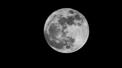 Super Moon - Wolf - 1-1-18 - 1080p