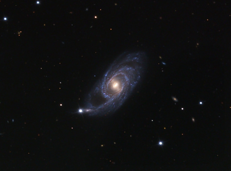 NGC 151 spiral galaxy.  32 inch Schulman telescope on Mt. Lemmon, AZ with STL-11000M camera and A/O. Original data frames by Adam Block.  LLRGB image processing by JDS using CCDStack and Photoshop CS5.
