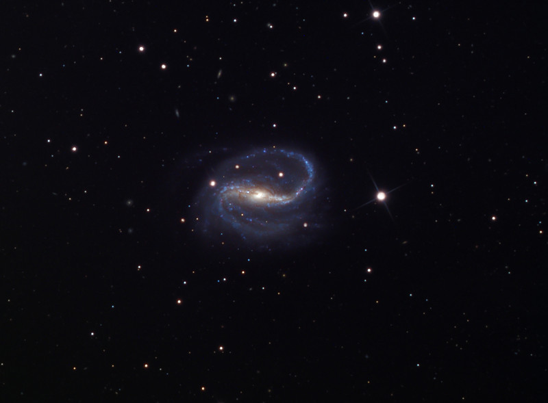 NGC 7479 barred spiral galaxy.  Schulman Foundation 24 inch telescope on Mt. Lemmon, AZ, with STL-11000M camera.  Data frames by Adam Block.  LRGB processing using Maxim DL, CCDSharp, and Photoshop CS3 by JDS.  In honor of the award of the Nobel Prize in Physiology or Medicine for 2010 to my colleague and friend, Professor Robert G. Edwards, Ph.D., F.R.S., the principal inventor of IVF (<em>in vitro</em> fertilization); Bob was knighted in 2011 and passed away April 10, 2013.