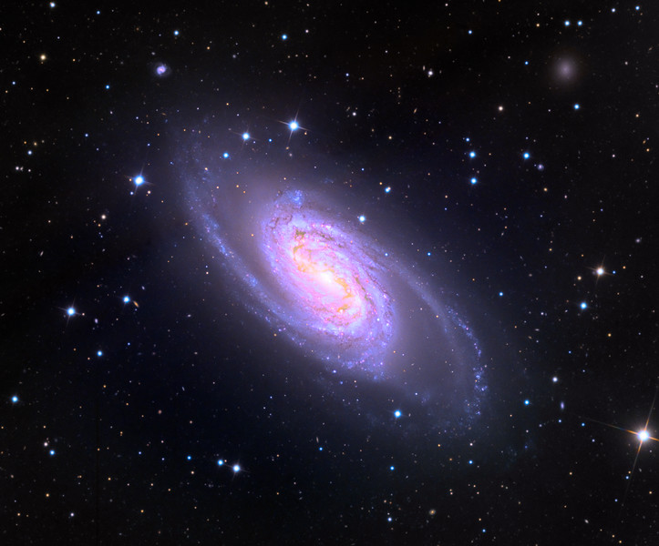 NGC 2903 spiral galaxy.  32 inch Schulman telescope with STX camera on Mt. Lemmon, AZ.  Data capture and reduction by Adam Block, University of Arizona.  LRGB processing by JDS using CCDStack, Photoshop CC, and Noise Ninja.