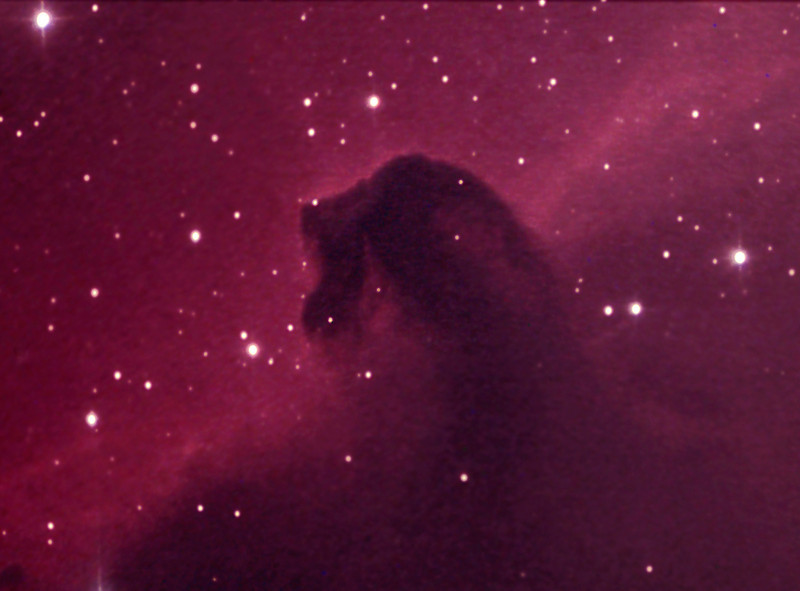 Horsehead nebula, close