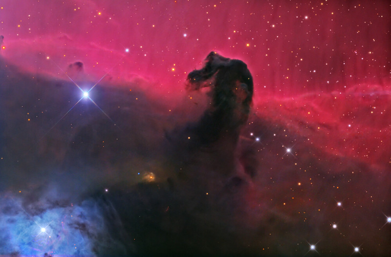 Horsehead nebula, image capture and processing by Adam Block on the borrowed 24 inch telescope on Mt. Lemmon.  Copyright by A. Block, Mt. Lemmon Science Center, University of Arizona.