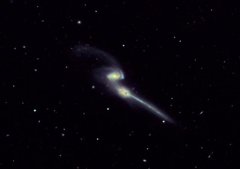 NGC 4676, Mice. LRGB, Mt. Lemmon 24 inch R-C, original gray scale data frames by Adam Block, processing by JDS