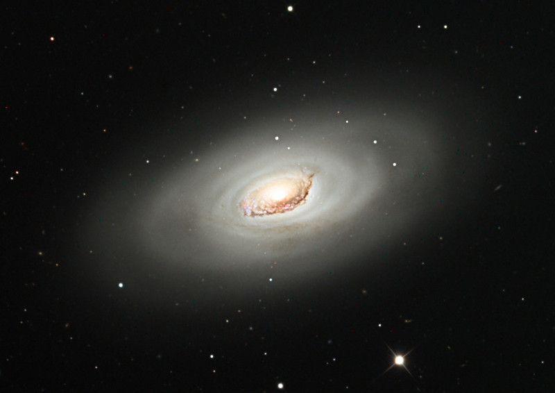 M64, Black Eye or Sleeping Beauty galaxy.  STX camera on the 32 inch Schulman telescope on Mt. Lemmon, AZ.  Data capture by Adam Block, University of Arizona.  Processing by JDS using CCDStack and Photoshop CS5.