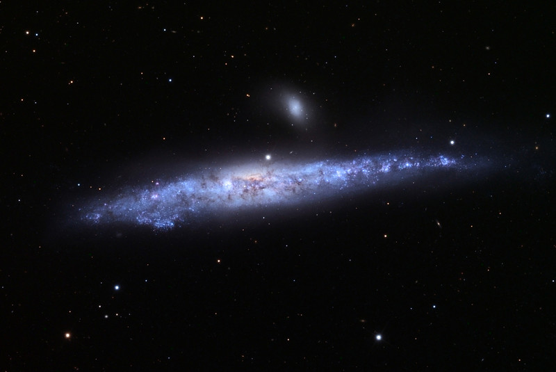NGC 4631, Whale Galaxy.  Schulman Foundation 24 inch telescope on Mt. Lemmon, AZ.  Local telescope operation and gray scale frames by Adam Block, University of Arizona.  LLRGB image processing by JDS.