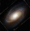M81, Hubble space telescope.  Downloaded from Hubble web site, then rotated and cropped to approximately match the image from the 32 inch telescope on Mt. Lemmon