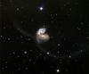 NGC 4038, The Antennae, colliding galaxies.  STX camera on the 32 inch Schulman telescope on Mt. Lemmon, AZ.  Data capture by Adam Block, University of Arizona.  Processing by JDS using CCDStack, Photoshop CS5, and Noise Ninja.