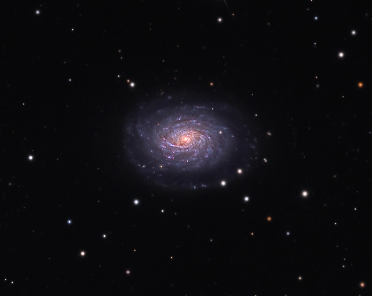 NGC 5962 spiral galaxy.  32 inch Schulman telescope with STX camera on Mt. Lemmon, AZ.  Data capture and reduction by Adam Block, University of Arizona.  LRGB processing by JDS using CCDStack and Photoshop CS5.
