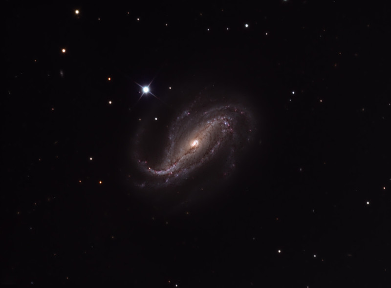 NGC 613 galaxy. 32 inch Schulman telescope on Mt. Lemmon, AZ. Data capture by Adam Block, University of Arizona. Processing by JDS using CCDStack and Photoshop CS5.
