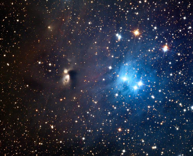 Complex nebula group vdB1.  32 inch Schulman telescope with STX camera on Mt. Lemmon, AZ.  Data capture and reduction by Adam Block, University of Arizona.  LRGB processing by JDS using CCDStack and Photoshop CS5.