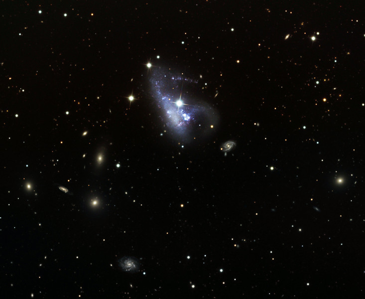 NGC 3239 galaxy with numerous other galaxies.  32 inch Schulman telescope with STX camera on Mt. Lemmon, AZ.  Data capture and reduction by Adam Block, University of Arizona. LLRGB processing by JDS using CCDStack and Photoshop CS5.  Note the apparent tight cluster of 3 stars below and to the right of the very bright star superimposed upon the main galaxy; the object in that triad closest to the main star is actually in NGC 3239, unlike the other stars, and is a supernova known as SN2012A.
