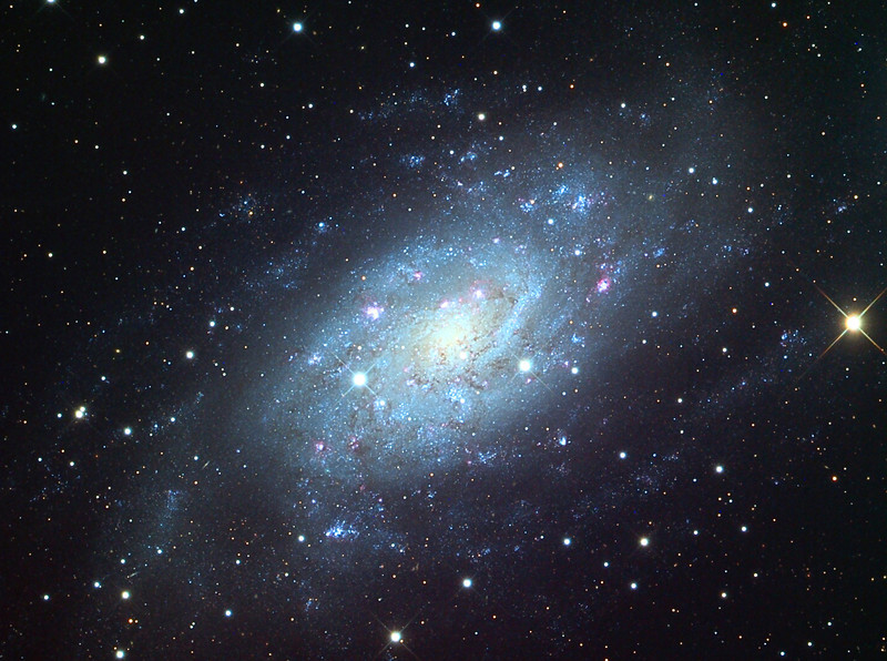 NGC 2403, spiral galaxy.  Schulman Foundation 24 inch telescope on Mt. Lemmon, AZ.  Local telescope operation and gray scale frames by Adam Block, University of Arizona.  LLRGB image processing by JDS.