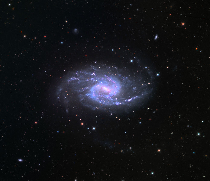 NGC 3359 barred spiral galaxy.  32 inch Schulman telescope 32 inch with STX camera on Mt. Lemmon, AZ.  Data capture and reduction by Adam Block, University of Arizona.  LRGB processing by JDS using CCDStack, Photoshop CC, and Noise Ninja.