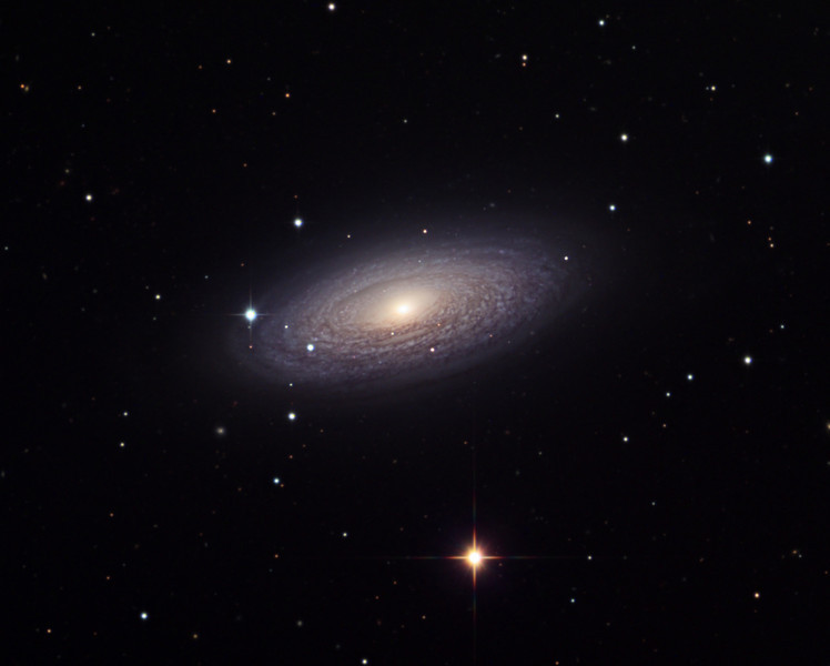 NGC 2841 spiral galaxy.  STX camera on the 32 inch Schulman telescope on Mt. Lemmon, AZ.  Data capture by Adam Block, University of Arizona.  Processing by JDS using CCDStack and Photoshop CS5.