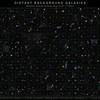Gallery of Distant Background Galaxies