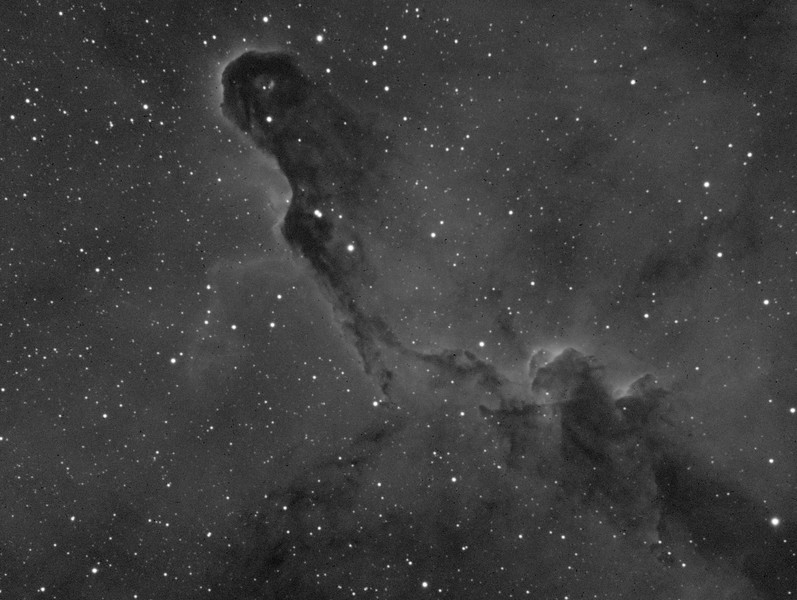 Elephant Trunk Nebula in Hydrogen Alpha (Ha)