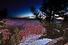 NEW!  Bryce Canyon, Utah, at sunrise