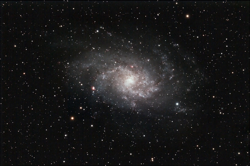 Target:  Triangulum Galaxy; M33 (NGC 598, spiral galaxy in Triangulum, apparent dimension 75x45 arcmin, magnitude 5.7)<br /> <br /> Distance from Earth:  3 million light-years<br /> <br /> Date/Time:  10/29/06, 2040EST to  0555EST<br /> <br /> Mount:  Takahashi NJP Temma II<br /> <br /> Telescope:  Takahashi TOA-130 refractor with Takahashi flattener (f/7.7) and Hutech LPS filter<br /> <br /> Camera:  Modified Canon EOS 350D guided by Takahashi FS-60C with Optec 0.62x telecompressor with SBIG STV (f/3.7)<br /> <br /> Focus:  VSE MicroGlide with RoboFocus and ImagesPlus 2.80<br /> <br /> Sky conditions:  transparency 3/5, seeing 2/5, wind light to moderate, humidity 65 to 70%, temp 40F at beginning and 35F at conclusion<br /> <br /> Moon:  7.9 day old, 0.521 illuminated, mag -10.4<br /> <br /> Images:  Captured with ImagesPlus 2.80 at an image scale of 1.52 arcsec/pixel; 18 light exposures, 600 sec duration, 0 sec delay, 10 sec interval, ISO 400; dark, flat and bias frames captured<br /> <br /> Processing:  ImagesPlus 2.80, Picture Window Pro 4.0 and Photoshop CS 8.0 with GradientXTerminator and Noise Ninja, revised 10/30/06