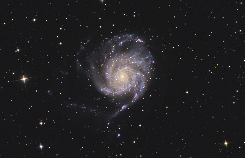 Target: M 101 (NGC 5457, Pinwheel Galaxy, spiral galaxy in Ursa Major)<br /> <br /> Distance from Earth:  27 million light-years<br /> <br /> Image FOV:  48 x 31 arcmins<br /> <br /> Telescope: PlaneWave CDK 17 (f/4.5)<br /> <br /> Camera: FLI ProLine PL6303E<br /> <br /> Images: Lum data captured at an image scale of 0.96 arcsec/pixel (unbinned) and RGB data captured at an image scale of 1.92 arcsec/pixel (binned 2x2); total of 24, 300 sec subexposures; total exposure time of 120 minutes; 60 minutes (L), 20 minutes (R), 20 minutes (G) and 20 minutes (B) on Apr 22, 2012<br /> <br /> Processing: MaxIm DL 5.12 with Remove Bloom, Registar 1.0 and Photoshop CS3 with Noise Ninja, GradientXTerminator and StarSpikes Pro; final image scale 0.96 arcsec/pixel, image cropped