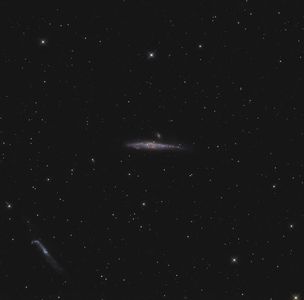 Target:  NGC 4631 (Whale Galaxy, spiral galaxy) and NGC 4656 (Hockey Stick Galaxy, spiral galaxy) in Canis Venatici<br /> <br /> Distance from Earth:  30 million light-years<br /> <br /> Image FOV:  65 x 64 arcmins<br /> <br /> Telescope: Takahashi TOA-130 (f/6.0) <br /> <br /> Camera: Starlight Xpress SXVR-H16<br /> <br /> Images: Captured at an image scale of 1.96 arcsec/pixel (binned 1x1); 44, 180 sec subexposures with the lum filter and 72, 180 sec subexposures with the RGB filters; 60 minutes (R), 72 minutes (G), 84 minutes (B) and 132 minutes (L); total exposure time of 348 minutes on May 8, 9, 20, 2011<br /> <br /> Processing: MaxIm DL 5.12 and Photoshop CS3 with GradientXTerminator, Noise Ninja and StarSpikes Pro; image cropped