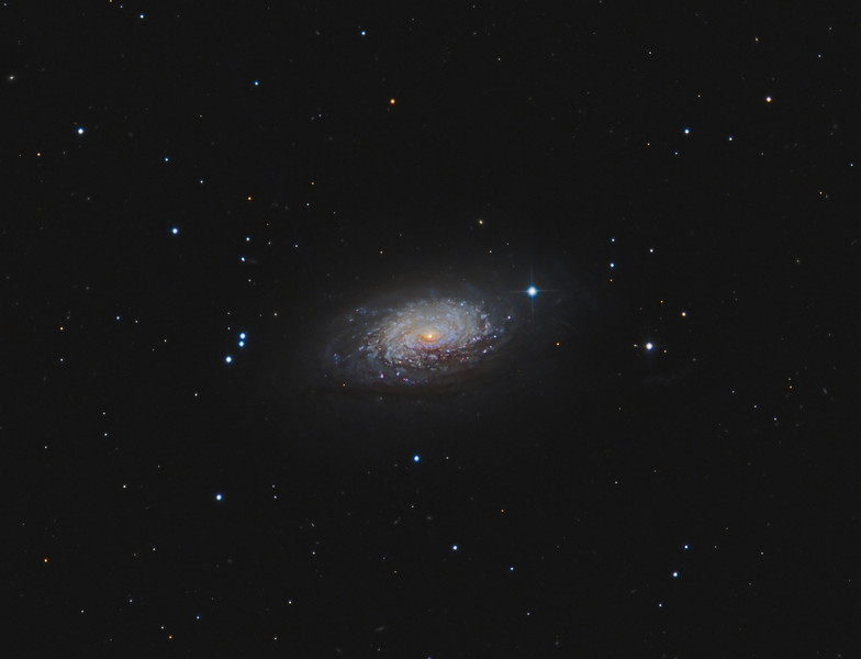 Target:  M63 (NGC 5055, Sunflower Galaxy, spiral galaxy in Canes Venatici)<br /> <br /> Distance from Earth:  37 million light-years<br /> <br /> Image FOV:  30 x 23 arcmins<br /> <br /> Telescope: PlaneWave CDK 20 (f/6.8) for Lum and Takahashi Epsilon (f/3.4) for RGB<br /> <br /> Camera: FLI ProLine PL11002M ccd for Lum and SBIG ST10XME for RGB<br /> <br /> Images: Luminance data captured from GRAS-011 at an image scale of 0.54 arcsec/pixel (binned 1x1); 22, 180 sec subexposures, 66 minutes on March 9, 2011.  RGB data captured from GRAS-005 in Mayhill, NM at an image scale of 1.66 arcsec/pixel (binned 1x1); 33, 300 sec subexposures; 55 minutes (R), 55 minutes (G) 55 minutes (B), 165 minutes on Jan 31, 2011; total exposure time of 231 minutes<br /> <br /> Processing: MaxIm DL 5.12, Registar 1.0 and Photoshop CS3 with GradientXTerminator, Noise Ninja and StarSpikes Pro; final image scale 0.54 arcsec/pixel, image cropped