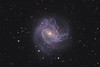 Target:  M 83 (NGC 5236, Southern Pinwheel Galaxy, spiral galaxy in Hydra)<br /> <br /> Distance from Earth:  15 million light-years<br /> <br /> Image FOV:  25 x 17 arcmins<br /> <br /> Telescope: PlaneWave CDK 20 (f/4.5)<br /> <br /> Camera: FLI ProLine PL6303E<br /> <br /> Images: Luminance data captured at an image scale of 0.81 arcsec/pixel (binned 1x1); RGB data captured at an image scale of 1.62 arcsec/pixel (binned 2x2); 69, 300 sec subexposures; 165 minutes (L) and 60 minutes each (RGB) in Apr and May 2013; total exposure time of 345 minutes<br /> <br /> Processing: MaxIm DL 5.18, CCDStack 1.0.7, Registar 1.0 and Photoshop CS3 with GradientXTerminator and StarSpikes Pro; final image scale 0.81arcsec/pixel; image cropped