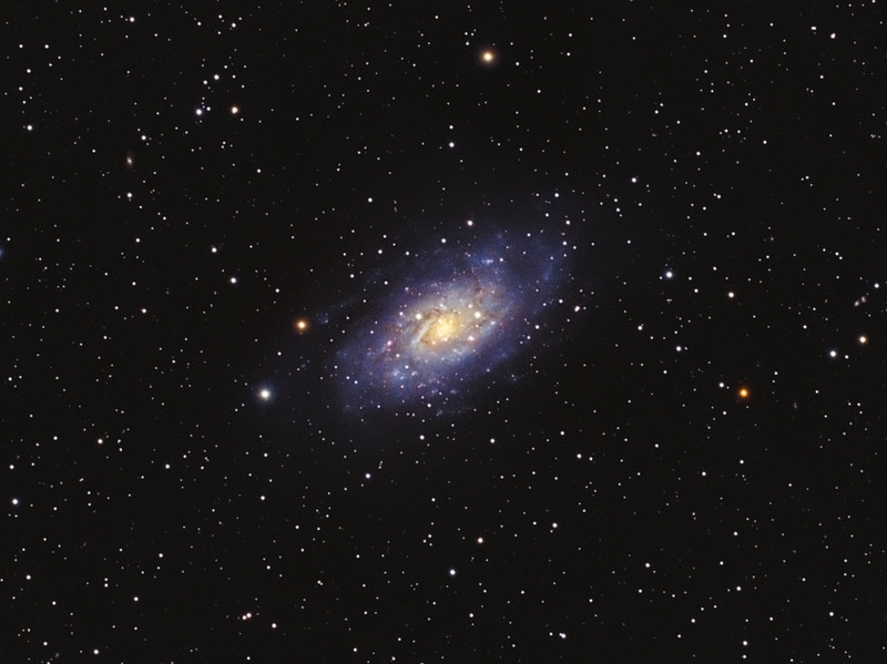 Target:  NGC 2403 (spiral galaxy in Camelopardalis) <br /> <br /> Distance from Earth:  10 million light-years<br /> <br /> Image FOV:  39 x 29 arcmins<br /> <br /> Telescope: Takahashi TOA-130 refractor with TOA-130 0.78x reducer (f/6.0) and Hutech LPS filter<br /> <br /> Camera: Starlight Xpress SXVF-M25C ccd guided by SX Autoguider with Takahashi FS-60C refractor (f/5.9)<br /> <br /> Focus: Finger Lakes Instrumentation DF-2 focuser with FocusMax/MaxIm DL software<br /> <br /> Images: Captured with MaxIm DL 4.60 at an image scale of 2.06 arcsec/pixel; total exposure time of 450 minutes on Jan 13, 2010<br /> <br /> Processing: MaxIm DL 5.05 and Photoshop CS3 with Noise Ninja and GradientXTerminator; image cropped (revised 03/15/10)