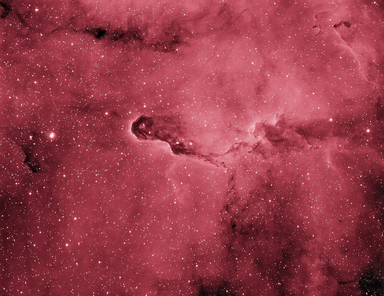 """Target: VdB142 (Elephant Trunk Nebula; reflection nebula in Cepheus) 4-panel mosaic in false-color narrowband (Ha)<br /> <br /> Distance from Earth:  3000 light-years<br /> <br /> Image FOV:  71 x 54 arcmins<br /> <br /> Mount: Takahashi NJP Temma II<br /> <br /> Telescope: Takahashi TOA-130 refractor with TOA-130 0.78x reducer (f/6.0) and Astrodon 5nm Ha filter<br /> <br /> Camera: Starlight Xpress SXVF-H9 ccd guided by SX Autoguider with Takahashi FS-60C refractor (f/5.9)<br /> <br /> Focus: Finger Lakes Instrumentation PDF focuser with FocusMax/MaxIm DL software<br /> <br /> Images: Captured with MaxIm DL 5.08 at an image scale of 1.69 arcsec/pixel; total exposure time of 480 minutes on May 29, 30, 31, 2010<br /> <br /> Processing: MaxIm DL 5.08, Registar and Photoshop CS3 with Noise Ninja and Astronomy Tools; Ha images processed in MaxIm DL, aligned in Registar and copied into PS; false color applied in PS with Astronomy Tools' """"B&W to Ha False Color Black Space"""" action to produce final image; image cropped"""