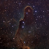 Target: VdB142 (Elephant Trunk Nebula; reflection nebula in Cepheus) in tri-color narrowband (SII + Ha + OIII)<br /> <br /> Distance from Earth:  3000 light-years<br /> <br /> Image FOV:  37 x 27 arcmins<br /> <br /> Mount: Takahashi NJP Temma II<br /> <br /> Telescope: Takahashi TOA-130 refractor with TOA-130 0.78x reducer (f/6.0) and Astronomik 12nm SII filter, Astronomik 12nm Ha filter and Astronomik 12nm OIII filter<br /> <br /> Camera: Starlight Xpress SXVF-H9 ccd guided by SX Autoguider with Takahashi FS-60C refractor (f/5.9)<br /> <br /> Focus: Finger Lakes Instrumentation DF-2 focuser with FocusMax/MaxIm DL software<br /> <br /> Images: Captured with MaxIm DL 4.60 at an image scale of 1.69 arcsec/pixel; 340 minutes (SII data), 220 minutes (Ha data), 440 minutes (OIII), total exposure time of 1000 minutes on Sept 3, 4, 5, 15, 16, 17, 2009<br /> <br /> Processing: MaxIm DL 5.05 and Photoshop CS3 with Noise Ninja; SII, Ha and OIII images processed individually in MaxIm DL and copied into PS.  SII, Ha and OIII data mapped to R, G and B channels and combined in PS to produce an RGB image; image cropped