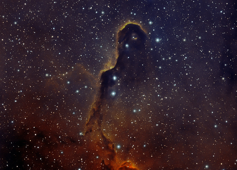 Target: VdB142 (Elephant Trunk Nebula; reflection nebula in Cepheus) in bi-color narrowband (Ha + OIII)<br /> <br /> Distance from Earth:  3000 light-years<br /> <br /> Image FOV:  37 x 27 arcmins<br /> <br /> Mount: Takahashi NJP Temma II<br /> <br /> Telescope: Takahashi TOA-130 refractor with TOA-130 0.78x reducer (f/6.0) and Astronomik 12nm Ha filter and Astronomik 12nm OIII filter<br /> <br /> Camera: Starlight Xpress SXVF-H9 ccd guided by SX Autoguider with Takahashi FS-60C refractor (f/5.9)<br /> <br /> Focus: Finger Lakes Instrumentation DF-2 focuser with FocusMax/MaxIm DL software<br /> <br /> Images: Captured with MaxIm DL 4.60 at an image scale of 1.69 arcsec/pixel; 220 minutes (Ha data), 440 minutes (OIII), total exposure time of 660 minutes on Sept 3, 5, 16, 17, 2009<br /> <br /> Processing: MaxIm DL 5.05 and Photoshop CS3 with Noise Ninja; Ha and OIII images processed individually in MaxIm DL and copied into PS.  Ha and OIII data used to create synthetic green channel (sG); Ha + sG + OIII mapped to R, G and B channels that were combined in PS to produce final image; image cropped