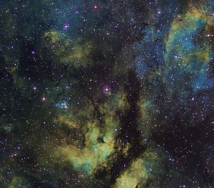 Target: IC 1318 (Gamma Cygni Nebula in Cygnus)  in tri-color narrowband (S2 + Ha + O3) using the Hubble palette<br /> <br /> Distance from Earth:  3700 light-years<br /> <br /> Image FOV:  156 x 138 arcmin<br /> <br /> Mount: Takahashi NJP Temma II<br /> <br /> Telescope: Takahashi FS-60CB refractor with Hutech 0.85x reducer (f/5.0) and Astrodon 5nm S2 & Ha and 3nm O3 filters <br /> <br /> Camera: Starlight Xpress SXVR-H16 ccd guided by SX Lodestar Autoguider with Takahashi FS-60C refractor (f/5.9)<br /> <br /> Focus: Finger Lakes Instrumentation PDF focuser with FocusMax/MaxIm DL software<br /> <br /> Images: Captured with MaxIm DL 5.10 at an image scale of 5.07 arcsec/pixel; 480 minutes (S2), 220 minutes (Ha) and 440 minutes (O3); total exposure time of 1140 minutes (57, 1200 sec subexposures) on Aug 29, Sep 17-22 and Oct 1, 2010<br /> <br /> Processing: MaxIm DL 5.12, RegiStar 1.0 and Photoshop CS3 with Astronomy Tools; S2, Ha and O3 images processed individually in MaxIm DL, aligned in RegiStar and opened in PS; S2, Ha and O3 data mapped to R, G and B channels and combined in PS to produce an RGB image; image cropped